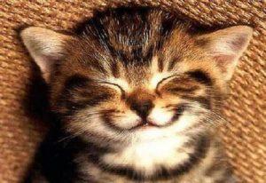 L'importanza di un sorriso.