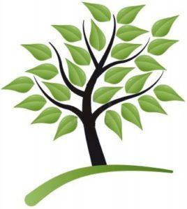 nice to have - albero con foglie